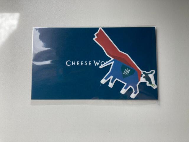 チーズワンダー チーズケーキ