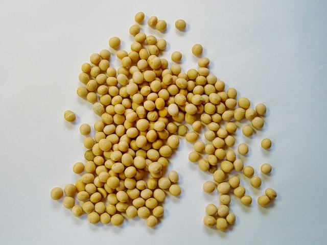 大豆 カスタマイズ